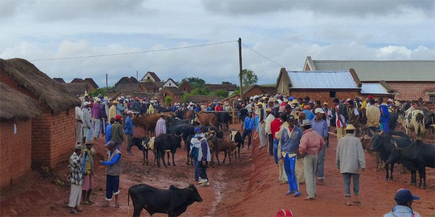 Les marchés et l'artisanat malgache.