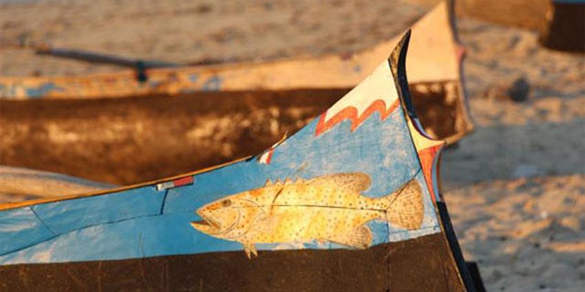 Snorkeling, plongée et sports nautiques à MAdagascar.