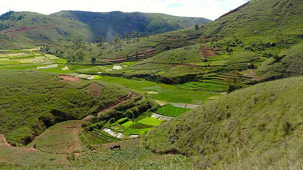 Le pays des collines à Madagascar.