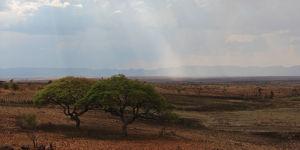 Massifs et plateaux - Madagascar