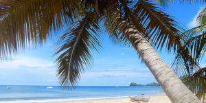 L'île de Nosy Be - Madagascar
